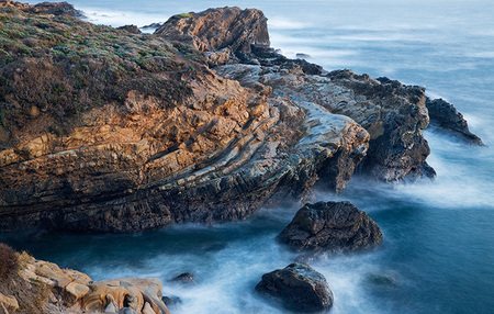 """Point Lobos Elements""     Point Lobos State Reserve, California"