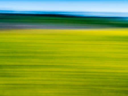 """Flower Field And Ocean Abstract II""     Central California"