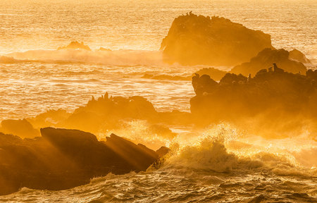 """Point Lobos Seal Rock Sunset""     Point Lobos State Reserve, California"