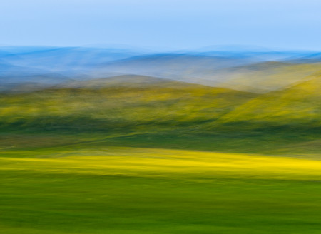 """Spring Flower Hills Abstract""     Carrizo Plain National Monument, California"