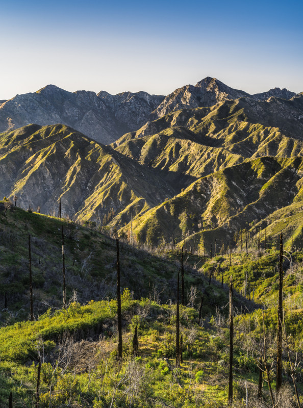 """Ventana Ridge On A Late Spring Afternoon""     Los Padres National Forest, California"