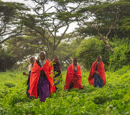 """Maasai Women In A Forest Caught In The Rain""     Ngorongoro Highlands, Tanzania"