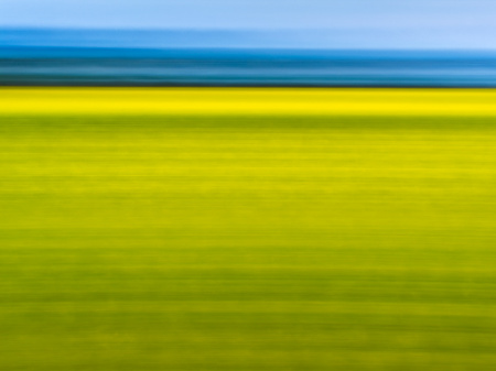 """Flower Field And Ocean Abstract""     Central California"