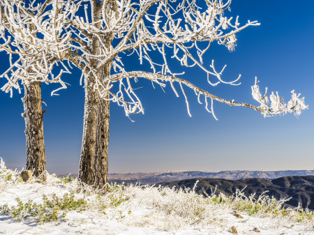 """Snow On A Central California Peak""     Los Padres National Forest, California"